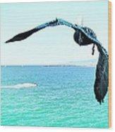 Pelican And Jetski Wood Print by Brian D Meredith