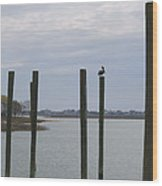 Pelican And Pilings On The Inlet Wood Print