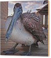 Pelican Close And Low Wood Print
