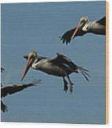 Pelican Collage Wood Print