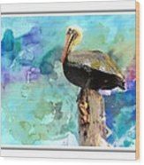 Pelican Colours Wood Print