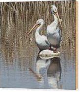 Pelican Deuce Wood Print by Diane Alexander