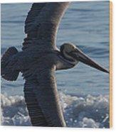 Pelican Flight Wood Print