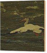 Pelican Flying Low Wood Print