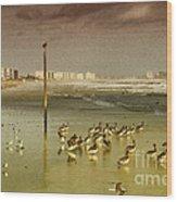 Pelican Haven Wood Print