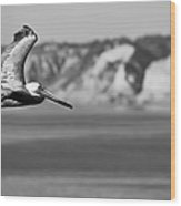 Pelican In Black And White Wood Print