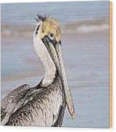 Pelican In Need Wood Print