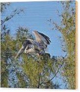 Pelican Landing Wood Print