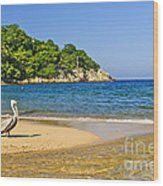 Pelican On Beach Wood Print