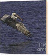 Pelican Over Water Wood Print
