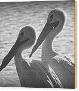 Pelican Pals Wood Print