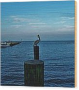 Pelican Pamlico Sound Hatteras 2/11 Wood Print