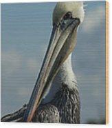 Pelican Profile Wood Print