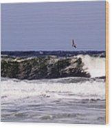 Pelican Sighting II Wood Print