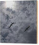 Pelican Sky Wood Print