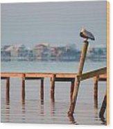Pelican Sleeping On Sound At Angle Wood Print