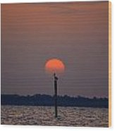 Pelican Sunrise Silhouette On Sound Wood Print by Jeff at JSJ Photography