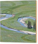 Pelican Valley Swirls Wood Print