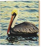 Pelican Waters Wood Print