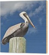 Pelican With Sky Wood Print