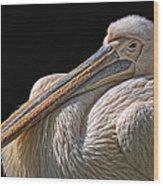 Pelicano Wood Print
