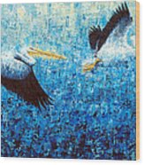 Pelicans 2 Wood Print by Ned Shuchter