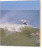 Pelicans 3868 Wood Print