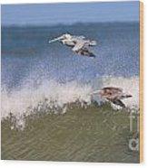 Pelicans 3870 Wood Print