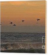 Pelicans At Sunrise 4674 Wood Print