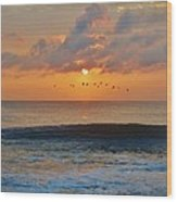 Pelicans At Sunrise 9 10/18 Wood Print