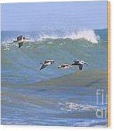 Pelicans Flying Between Waves 3788 Wood Print