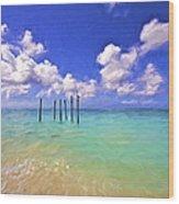 Pelicans Of Aruba Wood Print
