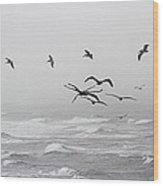 Pelicans On A Windy Foggy Day On The Oregon Coast Wood Print