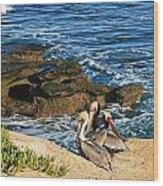 Pelicans On The Cliff - La Jolla Cove Wood Print