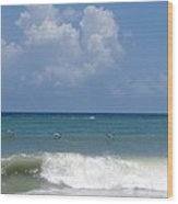 Pelicans Over The Ocean Wood Print