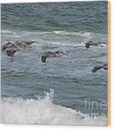 Pelicans Over The Water Wood Print