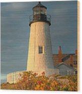 Pemaquid Point Light IIi Wood Print