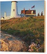 Pemaquid Point Lighthouse Wood Print by Brian Jannsen