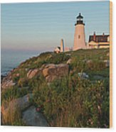 Pemaquid Point Maine Lighthouse Wood Print