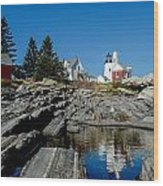 Pemaquid Point Reflections Wood Print