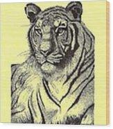 Pen And Ink Drawing Of Royal Tiger Wood Print by Mario Perez