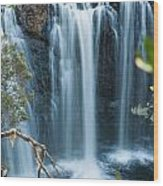 Pencil Pine Falls Cradle Mountain Wood Print