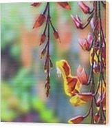 Pending Flowers Wood Print