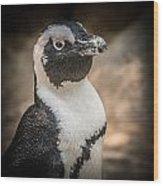 Penguin Posing Wood Print