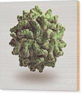 Penicillium Stoloniferum Virus Wood Print