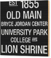 Penn State College Town Wall Art Wood Print by Replay Photos