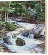 Pennsylvania Creek Wood Print