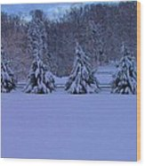 Pennsylvania Snowy Wonderland Wood Print
