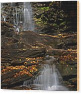 Pennsylvania Waterfalls Wood Print