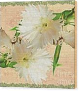 Penny Postcard Cheerful Wood Print